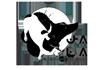 logo_jala_scontornato